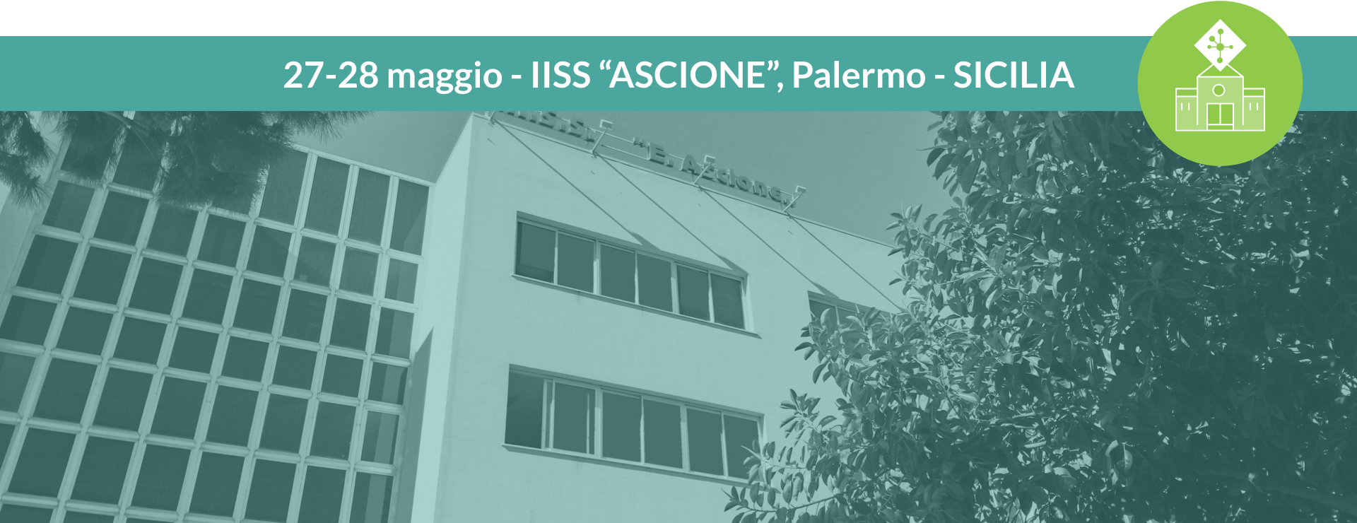 ascione_icona